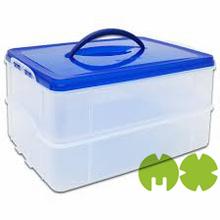 China Manufacture supply plastic storage box with lock,custom design plastic storage box with lock