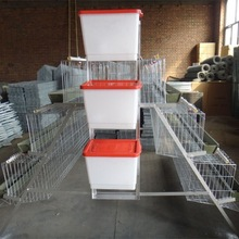Fiji Layer Farm Chicken Cages For Egg Production