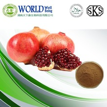 Hot Sell Pomegranate Seed Extract, Pomegranate Seed Extract Polyphenols, Natural Pomegranate Seed Extract