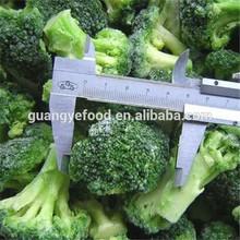 iqf frozen vegetable fresh broccoli
