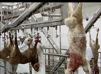 sheep,goat,lamb,ram abattoir plant slaughterhouse equipments