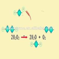 50000 active textile enzyme hydrogen peroxide enzyme