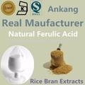 Calidad cosmética ferúlico en polvo 99%, Activo farmacéutica ingredientes