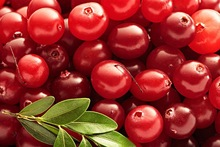 Cranberry extract proanthocyanidins,Natural extracts Cranberry Extract 5%, 15%, 25%, 30%, 50% Proanthocyanidins/Anthocyanins