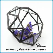 Sha-entertaining decoration clear glass diamond indoor plant terrarium egg funny plant pot holder for home decor