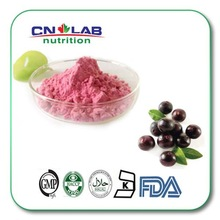 organic acai powder/acai powder bulk/acai berry powder brazil