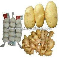 2012 New Crop Fresh Vegetable Price List ( Fresh Garlic / Ginger / Onion / Potato )