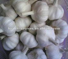 Pure and Natural Garlic Oil 99.9%
