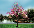 beautiful branches outdoor decorative peach flower led tree light,led peach flower tree,decorative tree