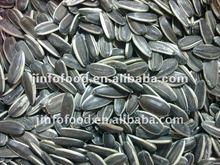 Sunflower seeds type5009