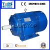 LTP Y Series electric motor 3 phase specifications