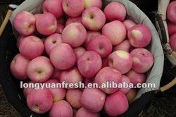 top fresh Fuji apple
