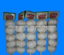 Nature Made Garlic, 250g/bag, 5p