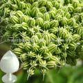 cnidium monnieri extrait de pépins de haute qualité