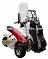 1000 w pelota de Golf eléctrico de tres ruedas SX-E0906-3A