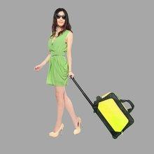 Travel bag on wheels