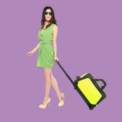 Travel bag parts