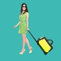 Travel wine bag