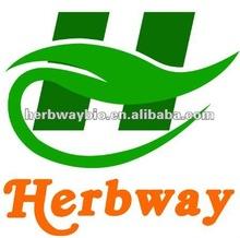 supply high quality of Aloe Vera extract,Aloe vera L.var.chinensis(Haw)Berger P.E.