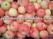 apple wholesale
