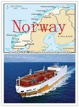 Shenzhen//Shanghai/Qingdao/Ningbo/Guangzhou Shipping Company Service to Norway