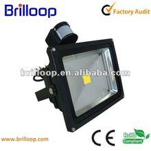 decorative motion sensor lighting 20w-50w optional