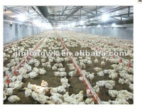 Automatic nipple drinking system for chicken house