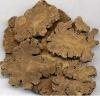 100% pure Natural!!! calm the nerve :Szechwan Lovage Rhizome P.E.