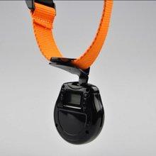ECO-188 2012 hot selling New Popular Mini LCD pet camera
