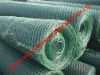 new products !!!!!!!! chicken cloth wire netting/poly coated wire netting(86-15831120981)