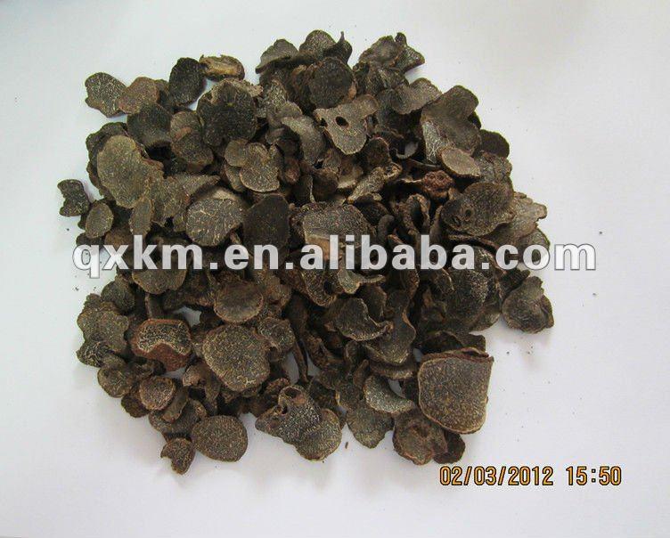 Seta del hongo superior negro secado de la trufa/del tubérculo