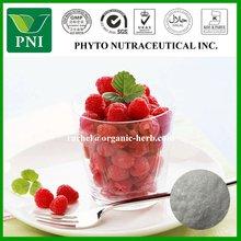 GC Test Raspberry extract raspberry ketone ingredients