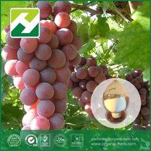 grape skin powder resveratrol wine
