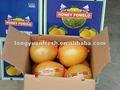 Novo chinês citus doce de frutas ( uva ) fresh red pomelo fornecedor 2012 safra