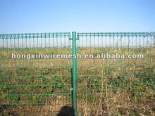 Iron Fence of garden netting