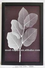 2012 New item Leaf Ps framed canvas art