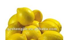 Real Look Artificial Lemon Supplier