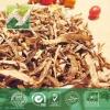 angelica Extract powder 1% Ligustilide