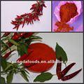 american chile rojo picado con sal y aceite