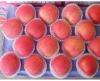 fresh fruit name export apple fuji of yantai in china 20kg,100,125