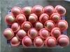 2012 Fresh Yantai Fuji Apple orchard supply of china