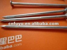 gordinary wire nail made in China for dubai
