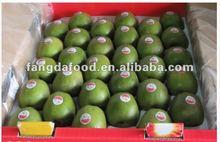hayward kiwi fruits packing in 3.5kg carton