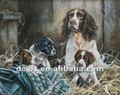 nuevo diseño de llegar los perros de la pintura al óleo para la decoración
