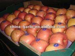 China Fresh Red Apple ( Fuji Apple/ Huaniu Apple ) 2012 New Crop
