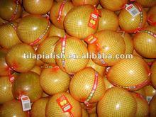 fresh fruit shaddock pomelo