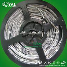 2012 New LED Strip, 2012 New CE LED Strips
