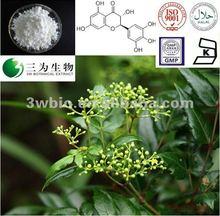 Vine tea extract - 90-98% Vine tea Dihydromyricetin - 27200-12-0