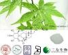 Rubus suavissimus extract - 70%Rubusoside - 64849-39-4 - sweet tea for diabetes