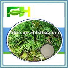 100% Natural Saw Palmetto Fruit Extract/Serenoa Serrulata Fruit Extract Powder
